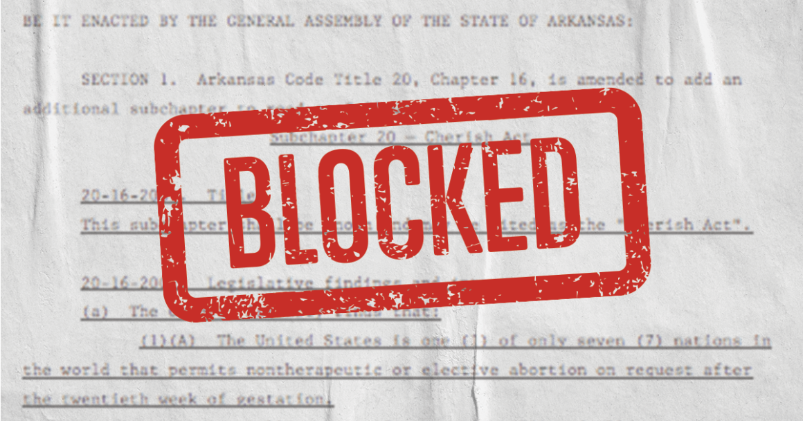 "text of an anti-abortion law with the word ""blocked"""